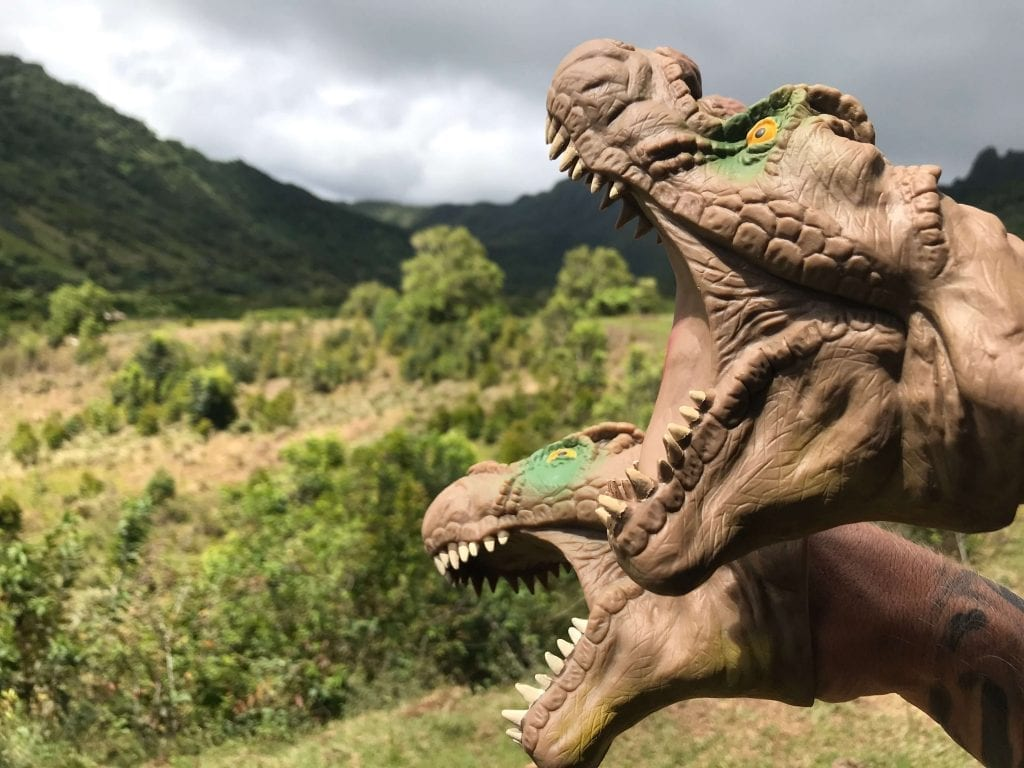Jurassic Park Kualoa Ranch